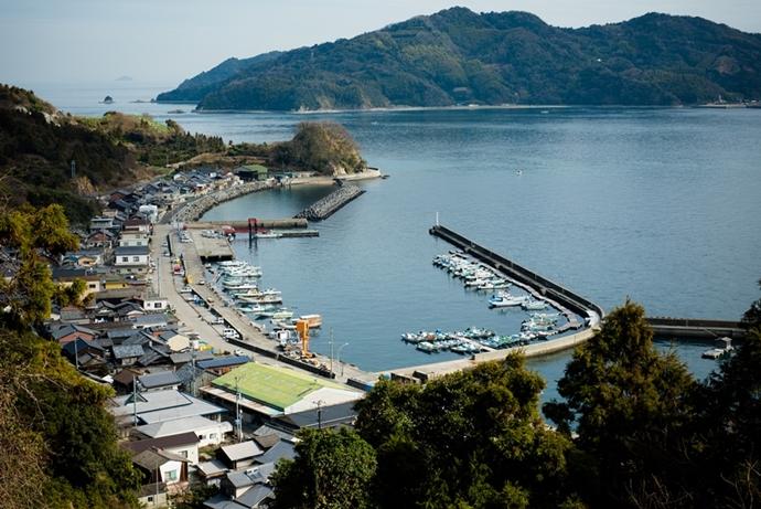 津和地港をのぞむ島の風景